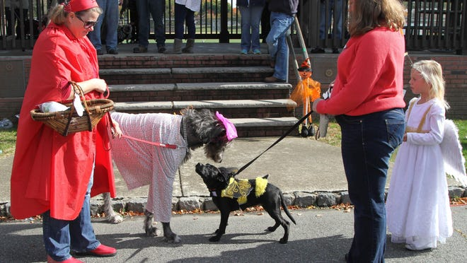 Mary Burke, as Little Red Riding Hood, and her dog MoChuisle, as the Big Bad Wolf, stop to greet CoCo along with her owners Vicki Harrison and her daughter Ally, 6, at the start of the first annual Howlin' Hound K9 Halloween Parade at the Gardner Field Pavilion in Denville on October 25.