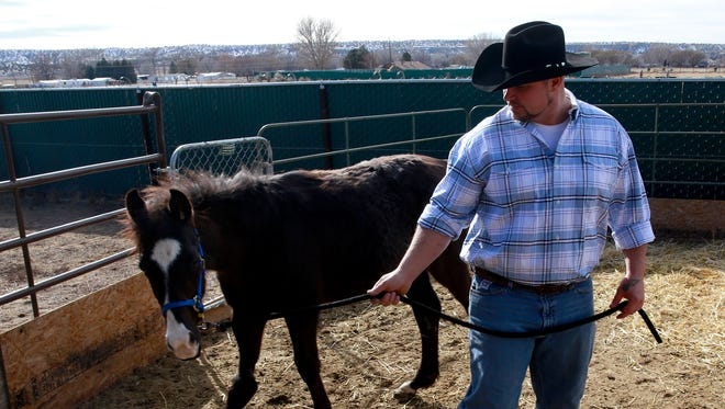 Ben Eicker walks Axle on Friday at his home southwest of Bloomfield. He and his wife, Christine, are trying to raise $12,000 to cover the cost of a life-saving surgery for the horse.