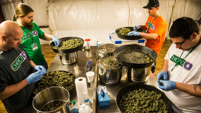 Richard Devine (from left to right), Jessie Hart , Kris Mora and David Ulibarri clean marijuana buds at Mohave Green's Choice Cannabis indoor grow operation, located at an undisclosed location in Mohave Valley.