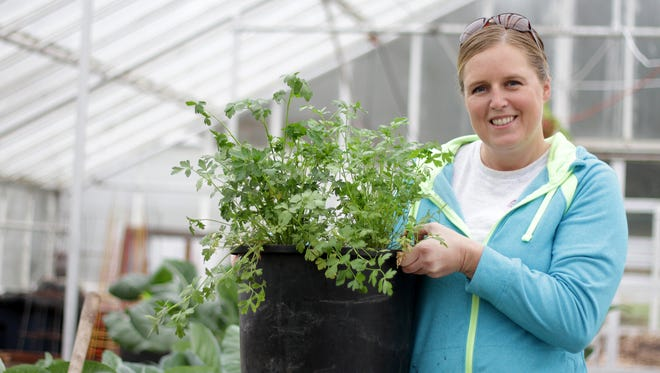 Colleen Owen, an urban gardener, grows parsley and other herbs in the glass greenhouses at the Sustainable Living Center at Pringle Creek Community in 2015. Urban Farmers classes begin Feb. 4.