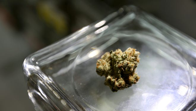 With buzz building across the globe, the momentum for the pot industry will continue into 2019.