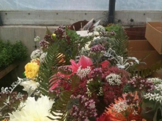 Helpline Flowers
