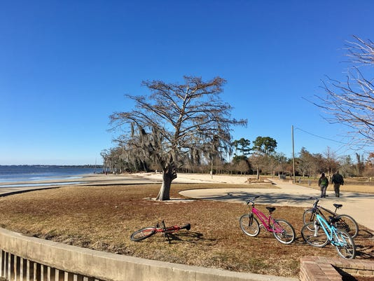 Fontainebleau-bikes.jpg