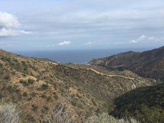 The view looking east from the Hermit Gulch Trail on Santa Catalina Island off the southern California coast.