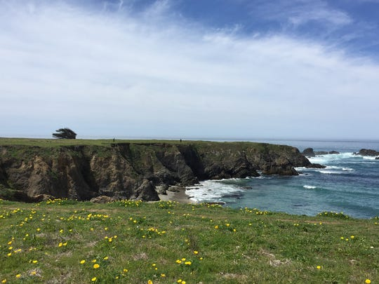 The Jug Handle State Natural Preserve is Fort Bragg, Calif. on the Mendocino Coast.