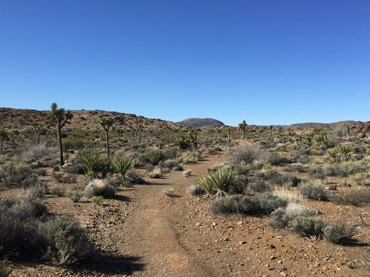 The California high desert.