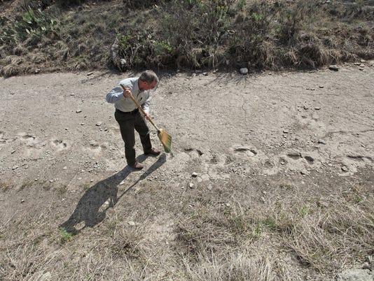 See Pre Dinosaur Tracks At San Angelo State Park