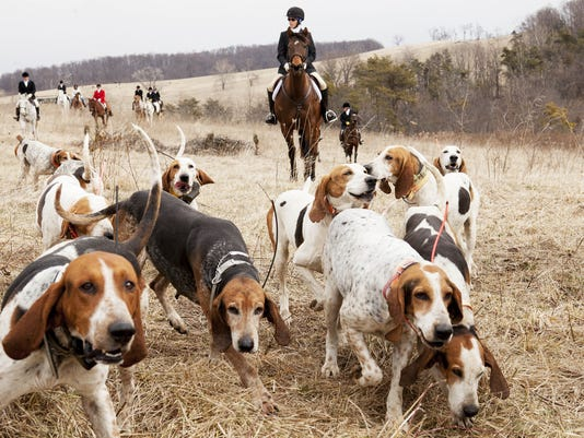 Glenmore Hunt Club.jpg