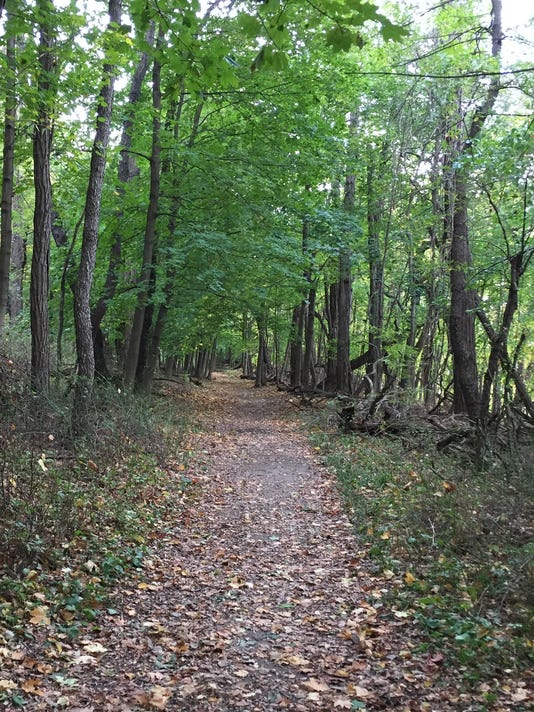 trail-cleanup---file-photo.jpg