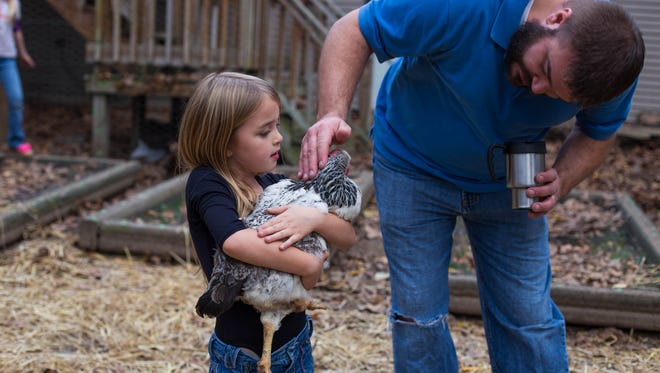 Adam Heikkila and his daughter Gracelle, 5, with one of their 23 chickens in the backyard of their Bedford Township home. Heikkila cannot have chickens at his home, according to the township's zoning laws.