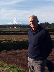 William Haines Jr. in the bogs of his second cranberry farm operation last week in Frutillar, Chile. Calbuco Volcano is in the background.