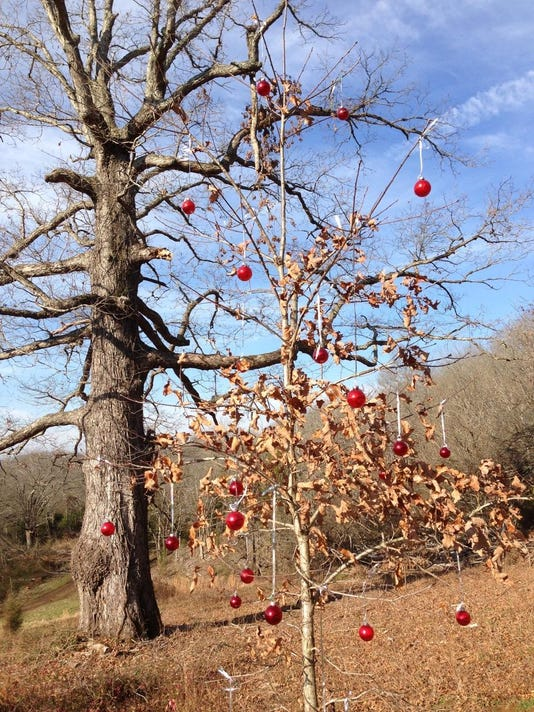 Fly_oak decorated