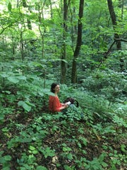 Amy Highland, Mt. Cuba Center's Director of Collections, takes field notes on a recent Trillium collection expedition to North Carolina.