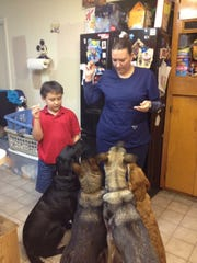 Several of Heather Wright's rescue dogs gather around her and her son, Jayden. Ash and Zelma (far left) died about four months ago. There is a grieving process and there's no replacing a pet but in time, there may be room at her home for another rescue dog, she said.