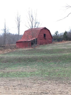 One of many rural landscapes along the Doodle Trail.