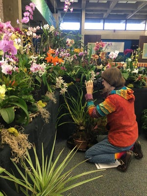 Orchid enthusiasts came to the World of Energy with cameras in hand to capture the rare beauty of tropical flowers shown during the annual Blue Ridge Orchid Society Show. A guest gets a closer look.