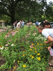 Volunteers participate in Keep Indianapolis Beautiful,
