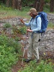 Author and guide Ellen Horowitz explains what is growing in the rocks to her tour.