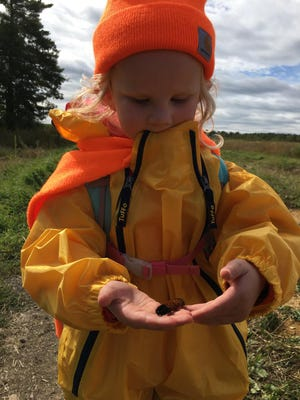 """White Pine and York Land Trust are partnering present a new program, """"Little Earth Explorers,"""" a weekly morning of outdoor learning at the land trust's headquarters."""