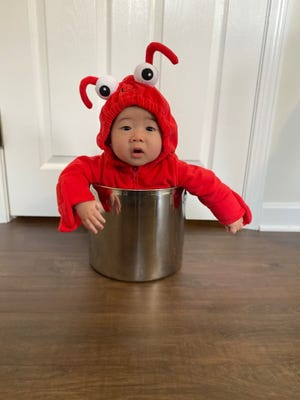 5-month old Billerica resident Teddy Reynolds celebrated Halloween dressed up as a lobster.