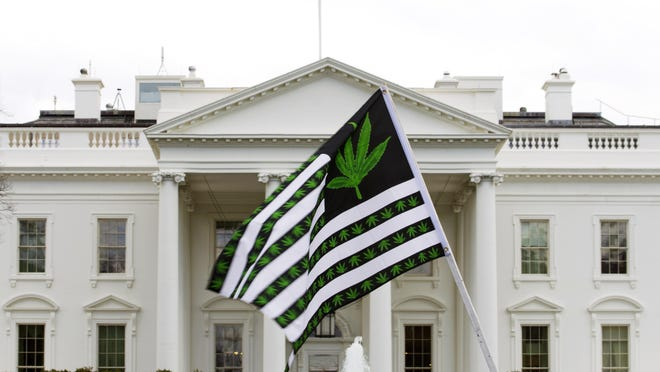 In this April 2, 2016 file photo, a demonstrator waves a flag with marijuana leaves on it during a protest calling for the legalization of marijuana, outside of the White House in Washington. Six states that allow marijuana use have legal tests for driving while impaired by the drug that have no scientific basis, according to a study by the nations largest automobile club that calls for scrapping those laws. (AP Photo/Jose Luis Magana, File)