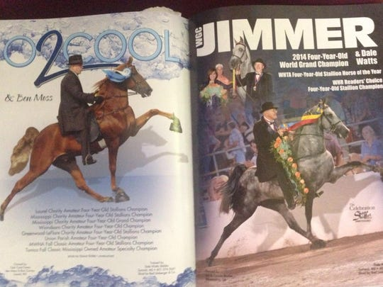 This is a two-page spread devoted to Carole Baxter's Jimmer Fredette in the The Year in Walking Horses 2014 yearbook.