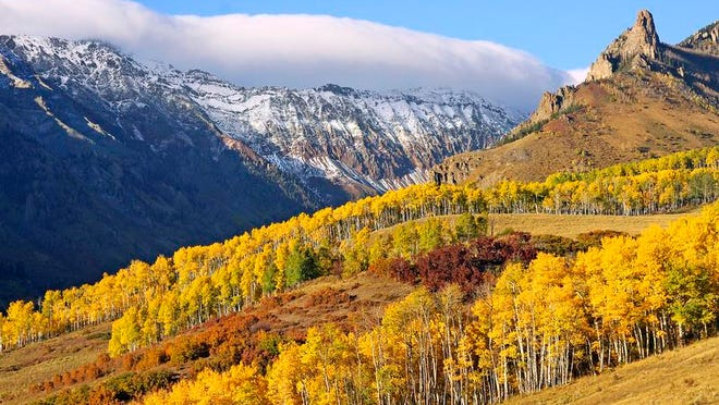 The Colorado autumn aspen show typically begins in mid-September and runs through mid-October. Last Dollar Road, a winding dirt road from Telluride to Ridgway, is one of Colorado's best aspen-viewing spots.