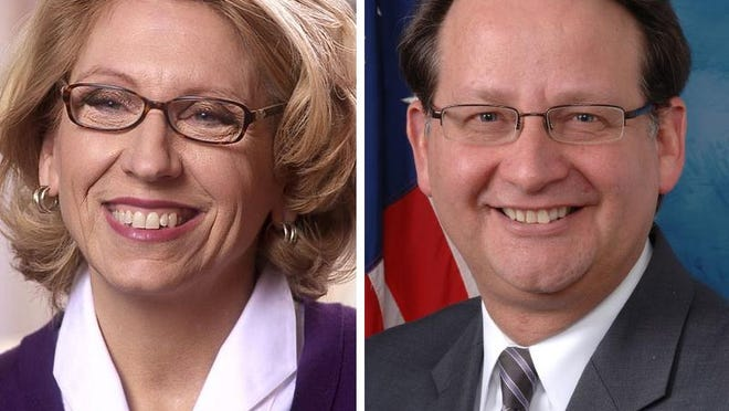 Former Secretary of State Terri Lynn Land, R-Byron Center and U.S. Rep. Gary Peters, D-Bloomfield Township are running for one of Michigan's U.S. Senate seats.