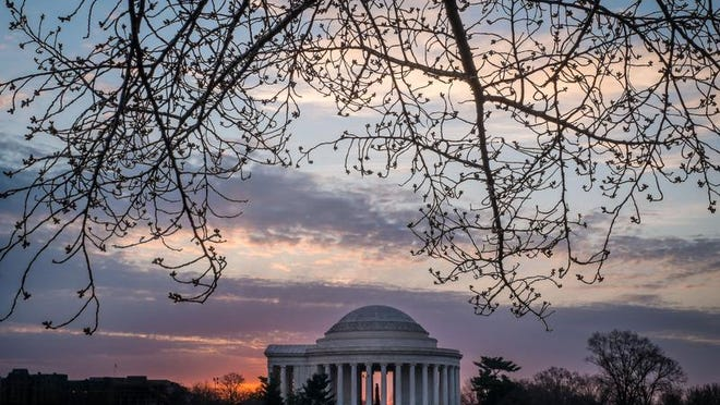 The buds on Cherry Blossoms trees frame the Jefferson Memorial across the Tidal Basin in Washington, seen against the early morning sky, Wednesday, April 2, 2014. The annual Cherry Blossom festival in the Nation's Capital ends April 13, 2014. (AP Photo/J. David Ake)