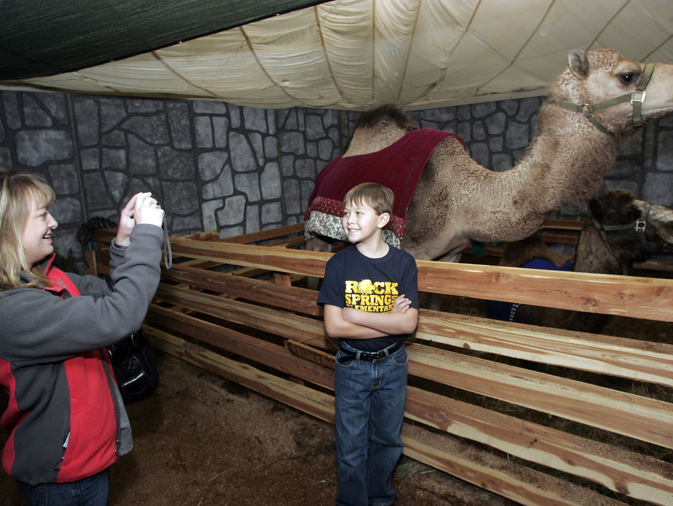 See real camels and feel like you're stepping back