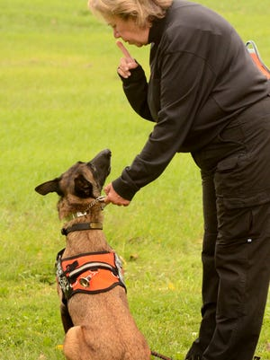 Grace Salm and her dog, Scout, a 4-year-old Belgium Malinois.