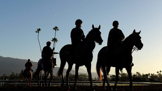 ARCADIA, CA - OCTOBER 29:  General view of training in preparation for the 2014 Breeder's Cup at Santa Anita Park on October 29, 2014 in Arcadia, California.  (Photo by Harry How/Getty Images)