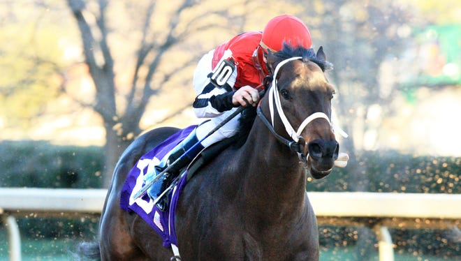 Ride On Curlin, with Calvin Borel up, wins an allowance race in January. Ride On Curlin is going to the Kentucky Derby and Borel, a three-time Derby winner, will be riding him. Borel had not been his jockey for the past few races.