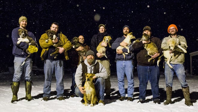 (Left to right) Brent Witters with Finn, Jake Rowe with Knox, Joe Gruber with Bear, Logan Wolf with Rosie, Mitchel Craddock with Brimmie, Trevor Jennings with Gunner, David Perkins with Daisy and Doug Craddock, front, with the mother of the litter, Annie, pose for a portrait in Vicksburg, Mich. on Wednesday, Dec. 14, 2016.