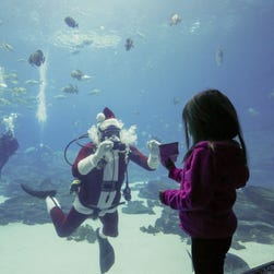 A young girl shows SCUBA Claus her Christmas present wish list at the Georgia Aquarium in Atlanta on Friday.