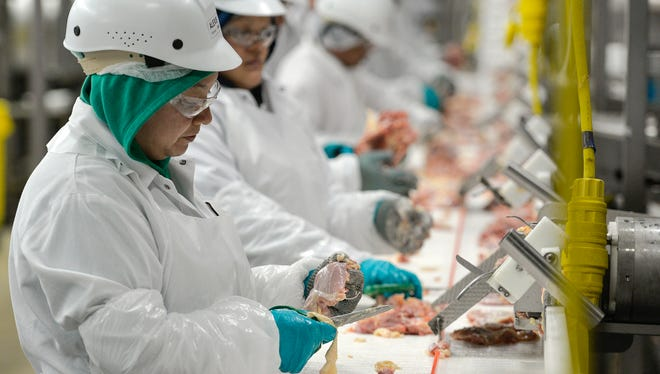 A line of employees works to debone chicken Tuesday morning, April 19, during a shift of processing at GNP Co. in Cold Spring. The plant processes up to a million birds a week, employing about 700 people, about 550 of them in processing.
