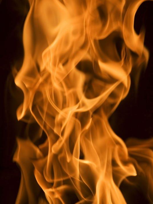 ELM 0420 FLAMES