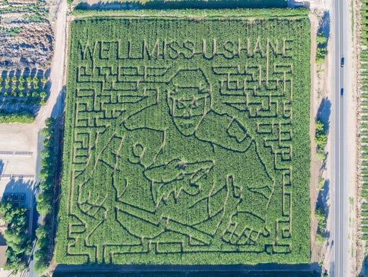 Shane Doan's face carved into Schnepf Farms corn maze