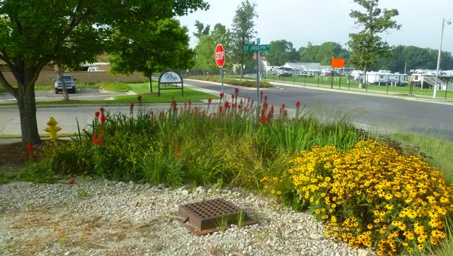 This rain garden is at the corner of St. Joseph Street and Minnetrista Parkway.