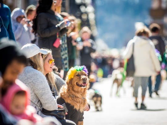 Crowds line Gay Street for last year's Mardi Growl dog parade. This year's parade is Saturday.