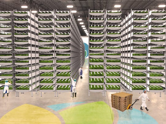 AeroFarms, which grows leafy greens and herbs in mist-filled racks under LED lights, has received a tax break for a potential Camden project.