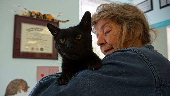 Wendy Ross holds a cat she brought from The Humane Society of Somerset County to the Spay Spa and Neuter Nook.