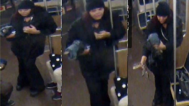 Officials of the Chicago Transit Authority asking for the public's help in identifying the woman who they say left an alligator at O'Hare International Airport.