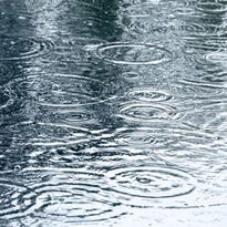 Weather: Rainy day is in the forecast