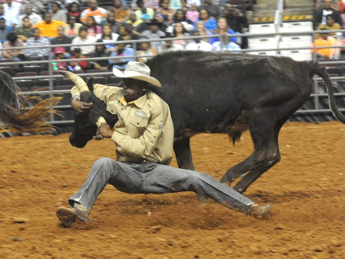 Bull Dogging action at the RCA National Black Rodeo