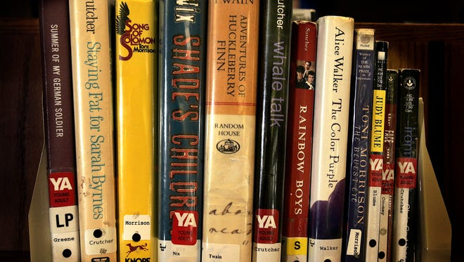 Some banned books on display at the Appleton Public Library.