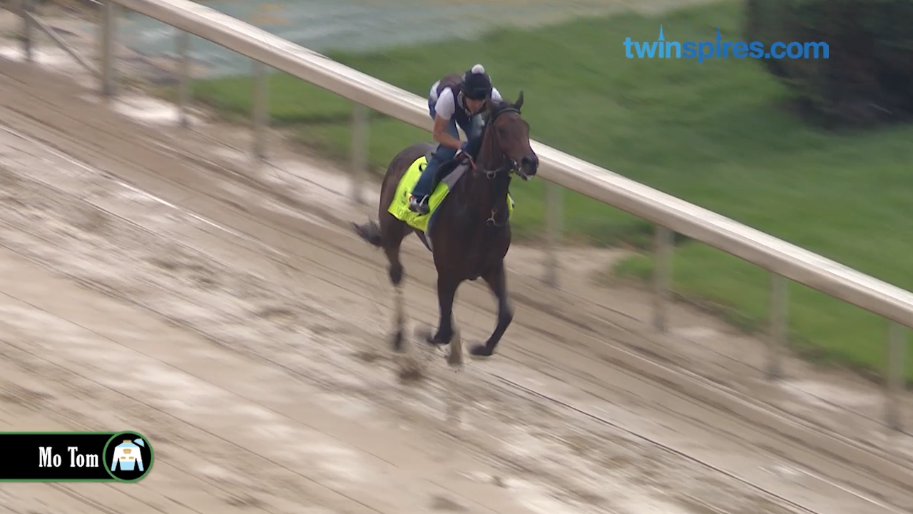 Kentucky Derby contenders: Mo Tom on the track at Churchill Downs Sunday 5.1.16.