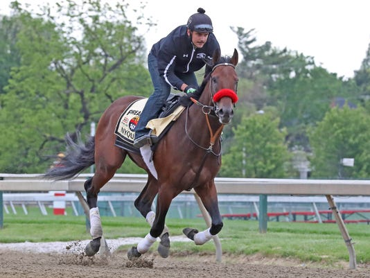 2016-05-20-preakness-gallery-nyquist