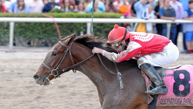Birdatthewire won the March 28 Gulfstream Park Oaks last time out.