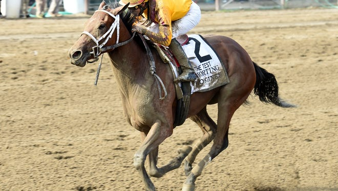Cavorting rallied from near-last to win Saturday's $500,000 Longines Test stakes with authority at Saratoga.
